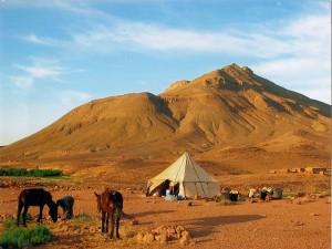 Zimmer in Marokko